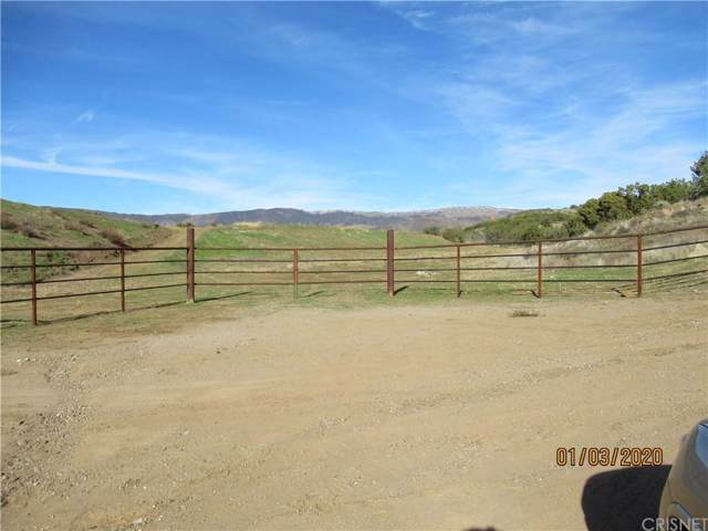0 Darling Rd Vic Tyndall Rd, Agua Dulce, CA  (#SR20002110) :: Lydia Gable Realty Group