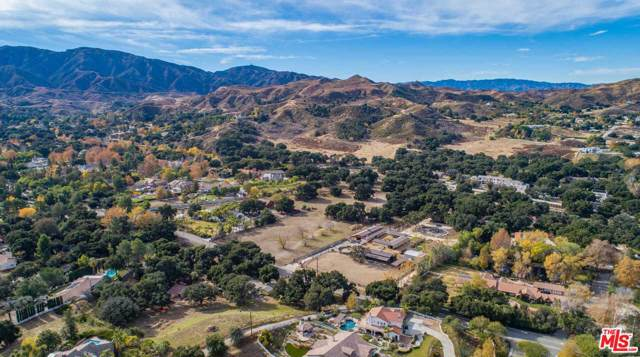 26837 Sand Canyon Rd, Canyon Country, CA 91387 (#20-540750) :: Randy Plaice and Associates