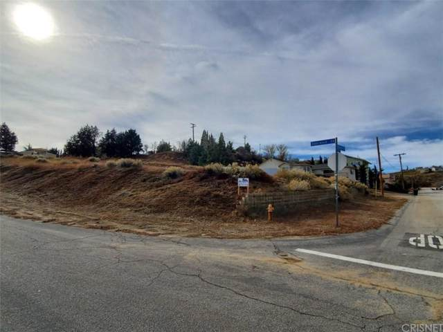 0 Cor Alderwood Rd/Datetree Drive, Lake Elizabeth, CA 93532 (#SR20003387) :: The Pratt Group