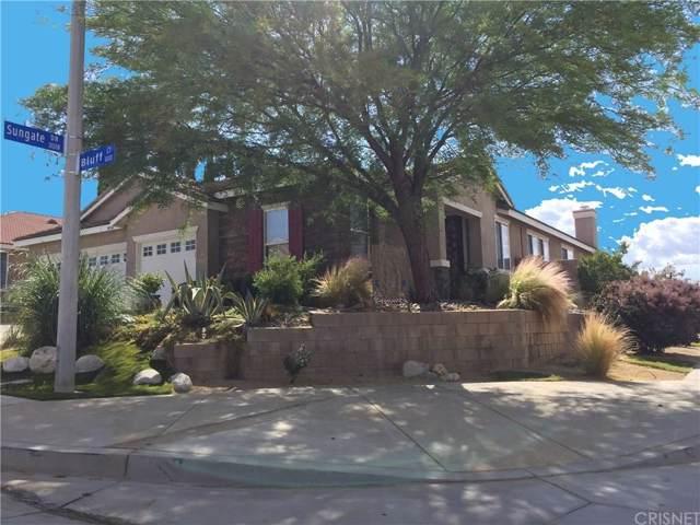 40041 Bluff Court, Palmdale, CA 93551 (#SR20007249) :: Randy Plaice and Associates