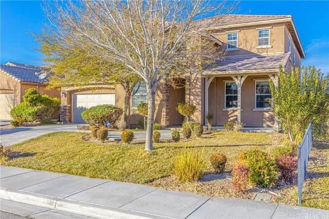 3027 Desert Moon Avenue, Rosamond, CA 93560 (#SR20007971) :: Randy Plaice and Associates