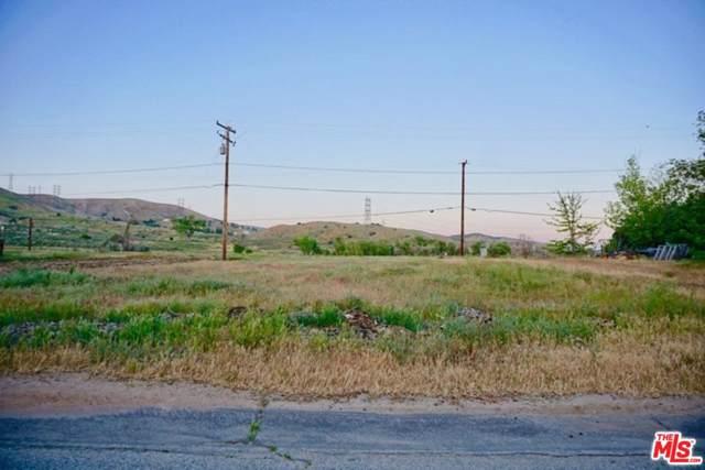 42774 Alderwood Road, Lake Elizabeth, CA 93532 (#20543592) :: The Pratt Group
