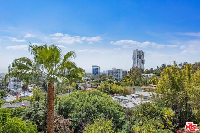 9056 St Ives Drive, Los Angeles (City), CA 90069 (#20541736) :: Randy Plaice and Associates