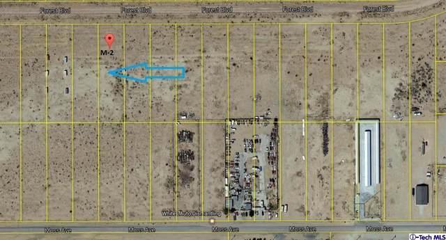 0 Forest- Boulevard, California City, CA 93505 (#320000237) :: The Pratt Group