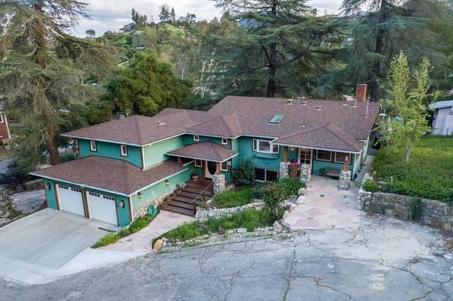 2315 Terrace Lane, Agoura Hills, CA 91301 (#220000692) :: Lydia Gable Realty Group