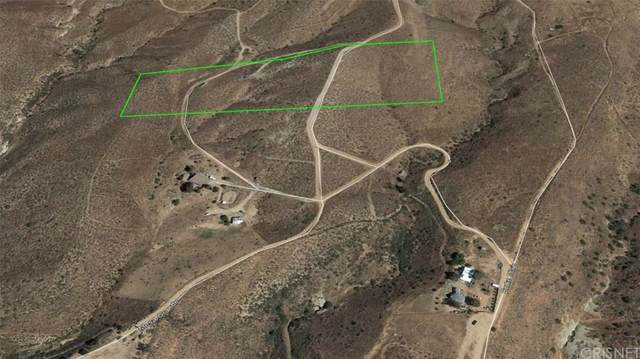 1 Vac/Vic Briggs Rd/1/2 Mi S Ave, Agua Dulce, CA 91390 (#SR20013822) :: Lydia Gable Realty Group