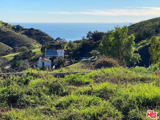 27152 Carrita Road, Malibu, CA 90265 (MLS #20546290) :: The Jelmberg Team