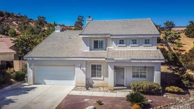 40219 Peonza Lane, Palmdale, CA 93551 (#SR20014869) :: Randy Plaice and Associates