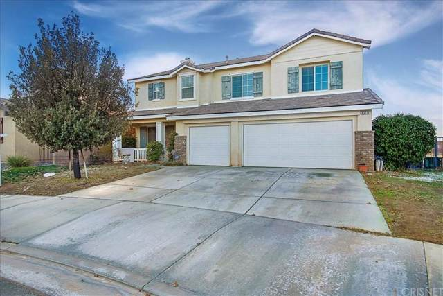 43271 62ND Street W, Lancaster, CA 93536 (#SR20017233) :: Randy Plaice and Associates