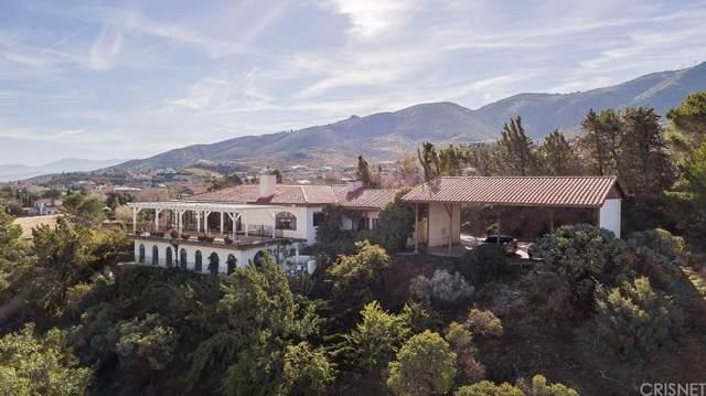 36663 Oliver Lane, Palmdale, CA 93551 (#SR20018031) :: The Agency