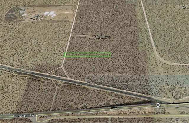 25800 Vac/Vic Avenue V12/258 Ste, Llano, CA 93591 (#SR20019697) :: Lydia Gable Realty Group