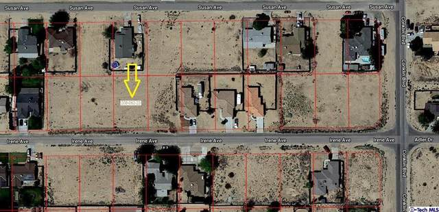 0 Irene Avenue, California City, CA 93505 (#320000514) :: Randy Plaice and Associates