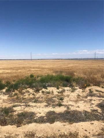 0 Vac/Vic Avenue G10/110 Stw, Antelope Acres, CA 93536 (#SR20031941) :: The Parsons Team