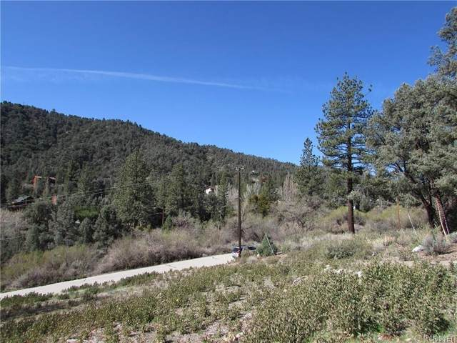 15309 Davos Court, Pine Mountain Club, CA  (#SR20033230) :: Lydia Gable Realty Group