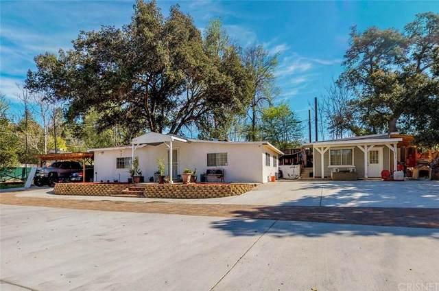 13117 Sierra, Agua Dulce, CA 91390 (#SR20034819) :: Randy Plaice and Associates