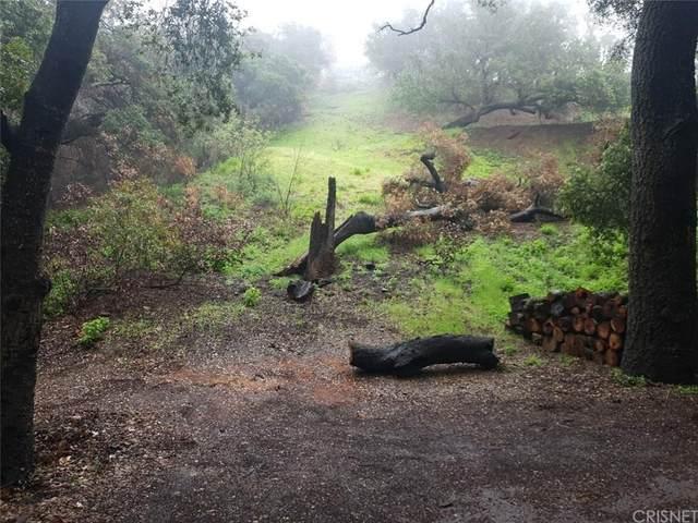 0 Escondido Trail, Malibu, CA 90265 (#SR20036196) :: Lydia Gable Realty Group