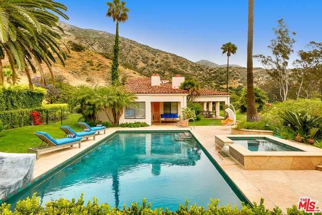 23287 Palm Canyon Lane, Malibu, CA 90265 (MLS #20557436) :: Deirdre Coit and Associates