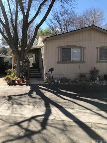 16274 Vasquez Canyon Road #27, Canyon Country, CA 91351 (#SR20042096) :: Eman Saridin with RE/MAX of Santa Clarita