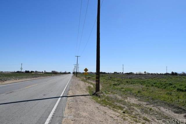 0 Vac/Ave D/Vic 95 Stw, Antelope Acres, CA 93536 (#SR20040045) :: The Parsons Team