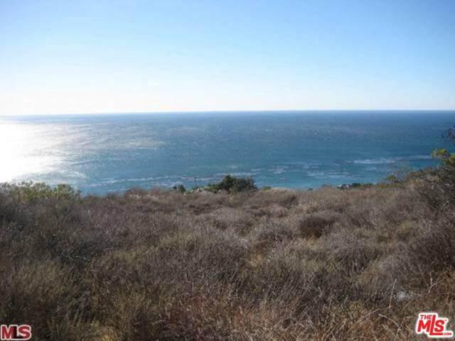 32838 Camino De Buena Ventura, Malibu, CA 90265 (MLS #20-561374) :: Zwemmer Realty Group