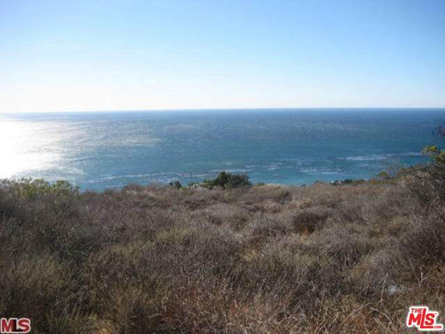 32838 Camino De Buena Ventura, Malibu, CA 90265 (MLS #20-561374) :: The Jelmberg Team