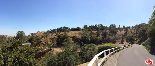 620 Mount Washington Drive, Los Angeles, CA 90065 (MLS #20-562420) :: The Jelmberg Team