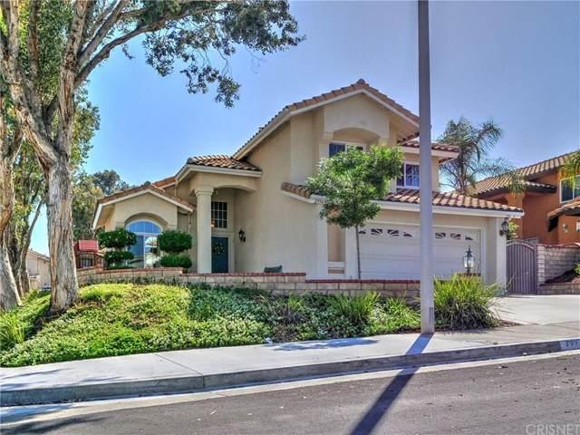 29949 Muledeer Lane, Castaic, CA 91384 (#SR20059974) :: Randy Plaice and Associates