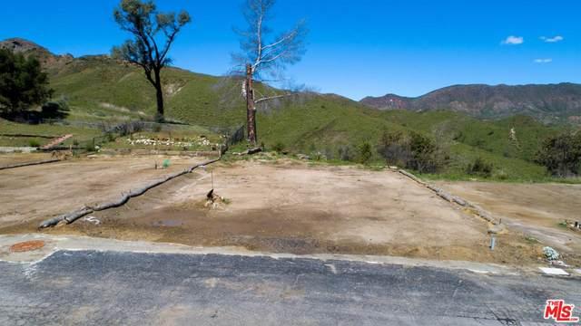 30473 Mulholland Hwy #189, Agoura Hills, CA 91301 (#20-565686) :: The Pratt Group