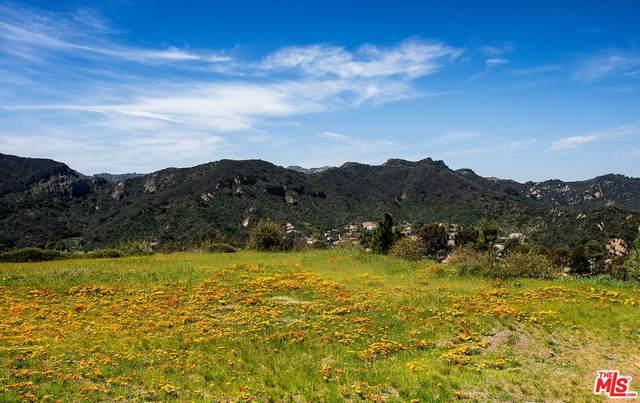 1445 El Bosque Ct, Pacific Palisades, CA 90272 (MLS #20-565650) :: The Sandi Phillips Team