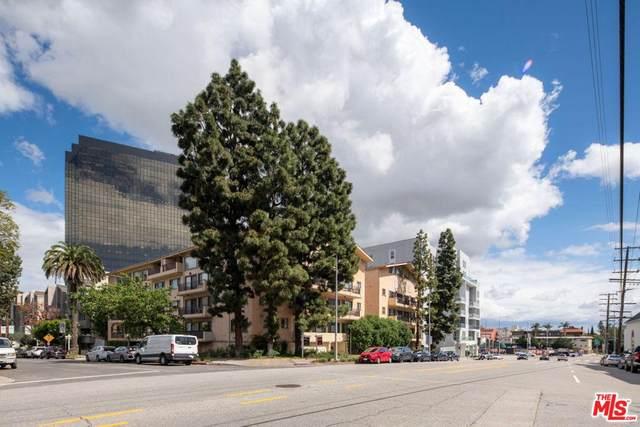 1154 S Barrington Avenue #208, Los Angeles (City), CA 90049 (#20566380) :: Randy Plaice and Associates