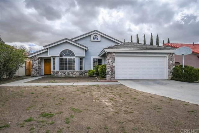 1032 Hook Avenue, Rosamond, CA 93560 (#SR20064283) :: Lydia Gable Realty Group