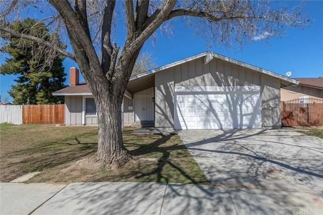 44239 Watford Avenue, Lancaster, CA 93535 (#SR20065114) :: Randy Plaice and Associates