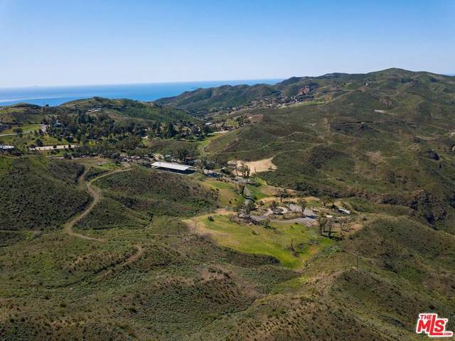 1501 Decker School Lane, Malibu, CA 90265 (MLS #20-567092) :: The Sandi Phillips Team