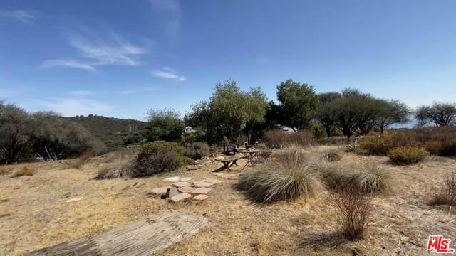 0 Tuna Canyon Rd, Topanga, CA 90290 (MLS #21-779136) :: Zwemmer Realty Group