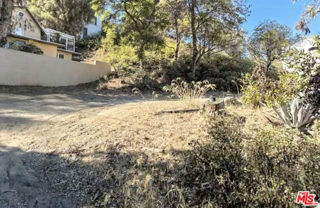 0 Cahuengha Park Trail, Los Angeles, CA 90068 (#21-781636) :: The Bobnes Group Real Estate