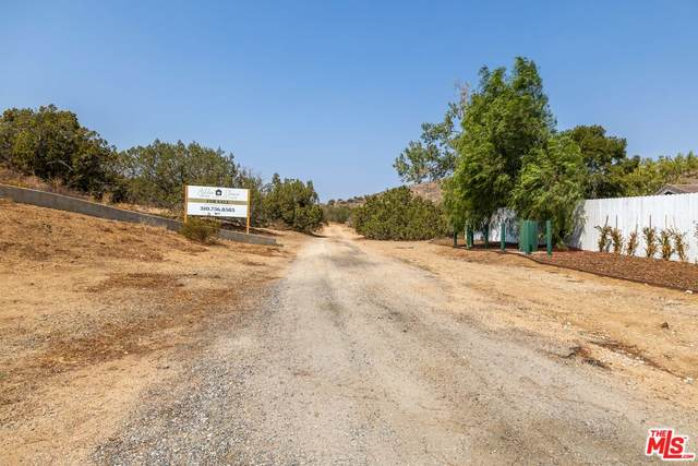 Kashmere Canyon Road Rd, Acton, CA 93510 (MLS #21-788038) :: The Sandi Phillips Team