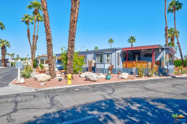 405 Wolf, Cathedral City, CA 92234 (#21-792562) :: The Pratt Group