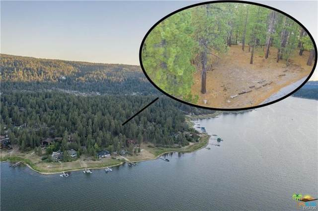 39224 Waterview Ln, Big Bear, CA 92315 (#21-799992) :: The Bobnes Group Real Estate