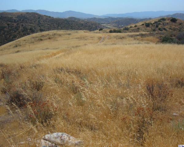 0 Diamond View Lane, Agua Dulce, CA 91390 (#317006066) :: Lydia Gable Realty Group