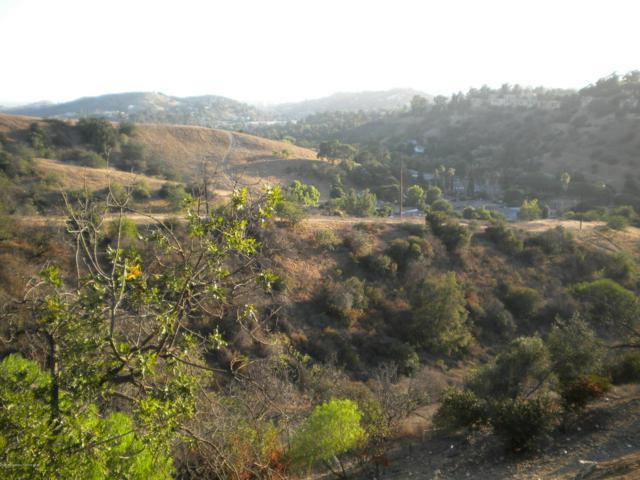 Hanscom Drive, South Pasadena, CA 91030 (#818005937) :: TruLine Realty