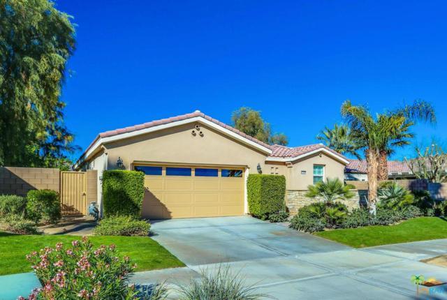 81098 Barrel Cactus Road, La Quinta, CA 92253 (#19419742PS) :: Fred Howard Real Estate Team