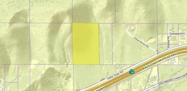 0 Vac/Vic Valleysage Rd/Tuthill Lane, Agua Dulce, CA 91350 (#SR19010250) :: The Agency