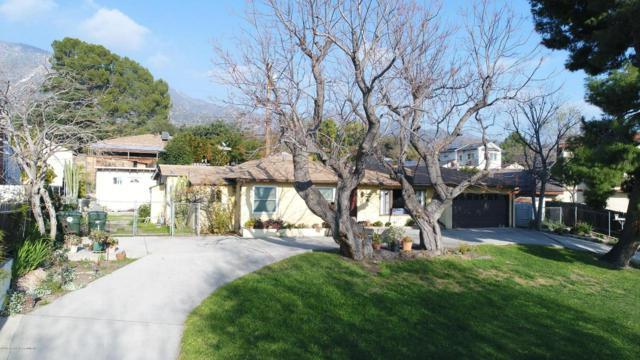3115 Los Olivos Lane, La Crescenta, CA 91214 (#819000287) :: TruLine Realty