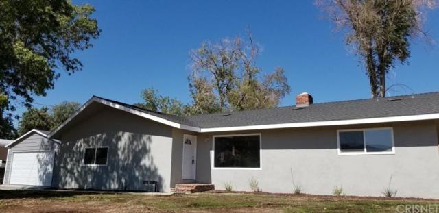 8739 Elizabeth Lake Road, Palmdale, CA 93551 (#SR19017810) :: The Parsons Team