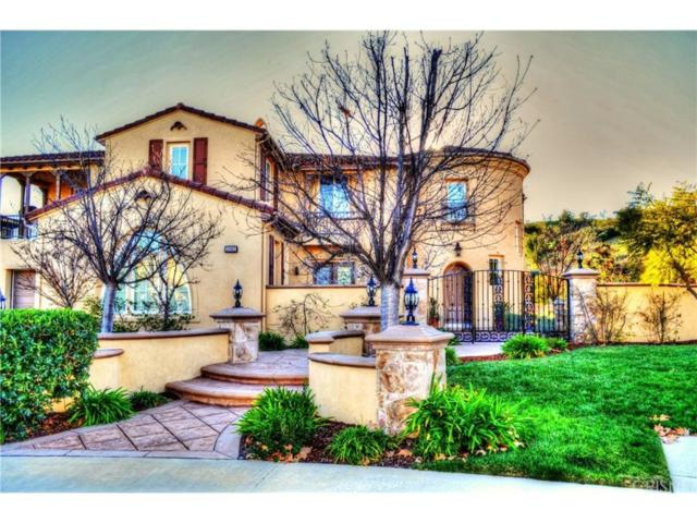 26962 Alsace Drive, Calabasas, CA 91302 (#SR19024979) :: The Agency