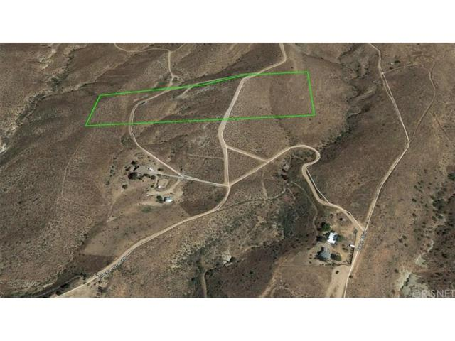1 Vac/Vic Briggs Rd/1/2 Mi S Ave, Agua Dulce, CA 91390 (#SR19029803) :: The Real Estate Offices of Talbot and Watson