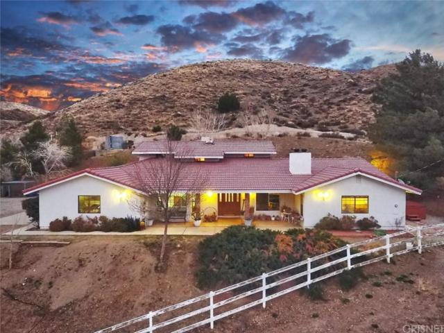 6600 Godde Hill Road, Leona Valley, CA 93551 (#SR19035776) :: The Real Estate Offices of Talbot and Watson