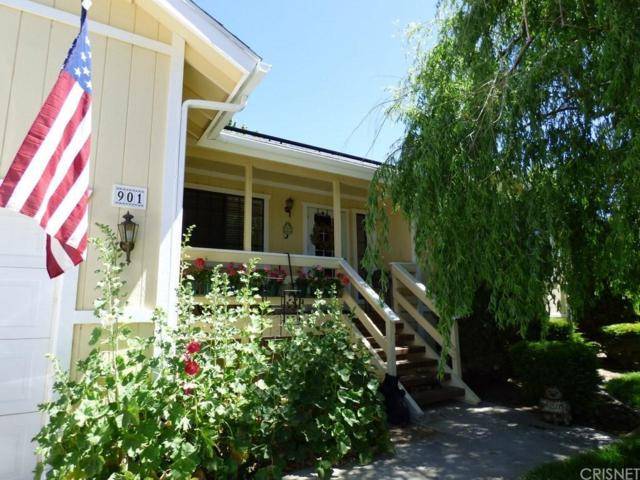 901 Eagle Lane, Frazier Park, CA 93225 (#SR19035869) :: Paris and Connor MacIvor