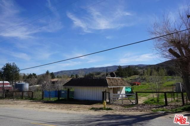 9258 Leona Avenue, Leona Valley, CA 93551 (#19436580) :: The Real Estate Offices of Talbot and Watson
