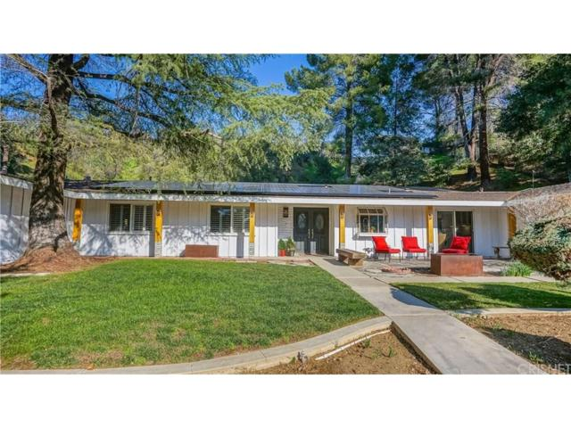 15715 Beaver Run Road, Canyon Country, CA 91387 (#SR19037940) :: The Real Estate Offices of Talbot and Watson